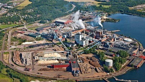 Svensk skog banar vägen för hållbarhetssatsningar – investeringarna skjuter i höjden