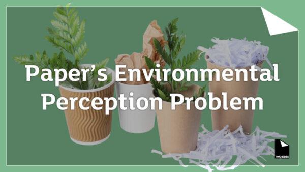 Miljømytene er fortsatt et problem for papiret