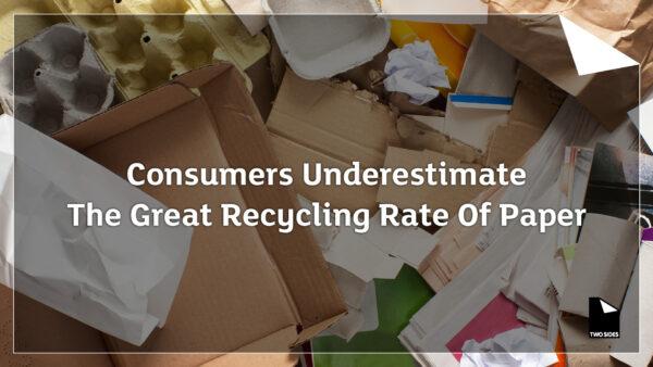 Konsumenterna underskattar den stora återvinningsgraden av papper